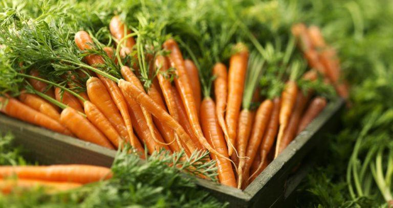 Carrots-HD-Wallpapers10