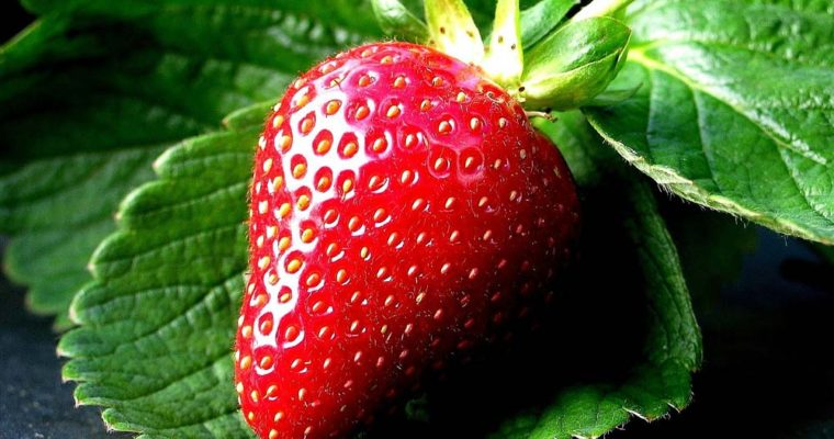 Strawberry-Fruit-on-Leaf-HD-Wallpapers