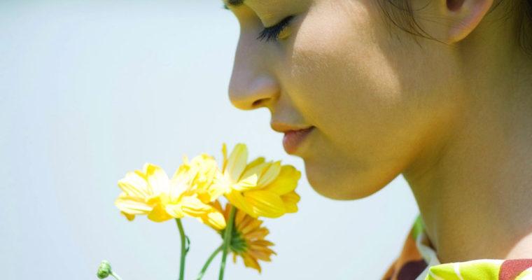 flower_girl_smell_breath_69996_2048x1152
